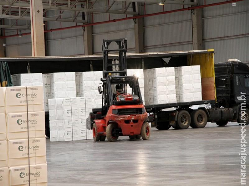 Celulose já responde por 60% das exportações de industrializados de MS, que atingem receita de US$ 2,14 bilhões em 7 meses