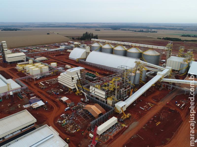Coamo inaugura em breve duas novas indústrias em Dourados/MS