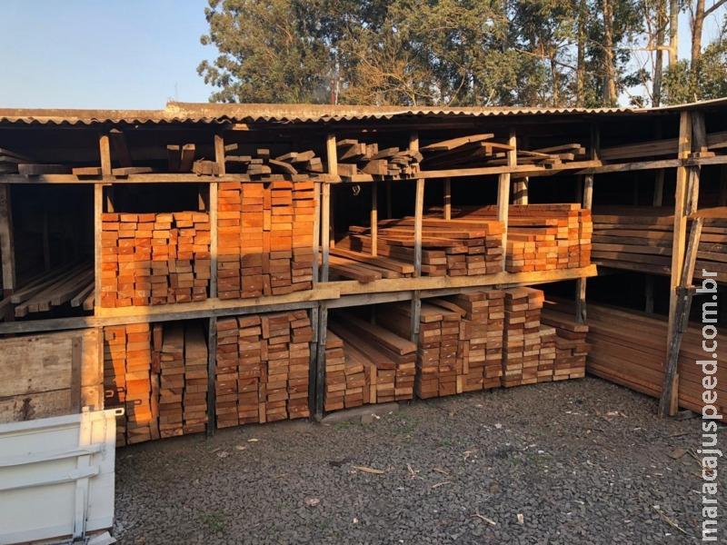 Operação investiga organização criminosa especializada em fraudar a emissão de documentos de origem de produtos florestais