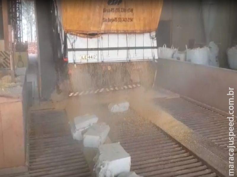 PRF apreende 677 kg de maconha escondidos em meio a carga de milho carregada em Maracaju