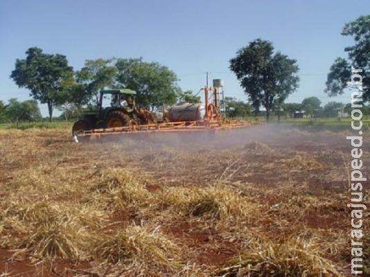 Correção do solo aumenta produtividade em até seis vezes
