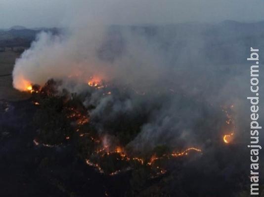 Em um mês, queimadas destruíram mais de 1 milhão de hectares em MS
