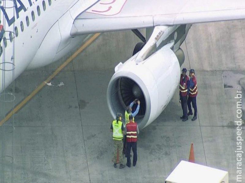 Avião com destino a Campo Grande retorna para aeroporto após colisão com pássaro