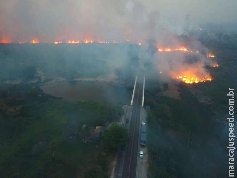 Força-tarefa combate fogo e queimadas já destruíram 50 mil hectares no Pantanal