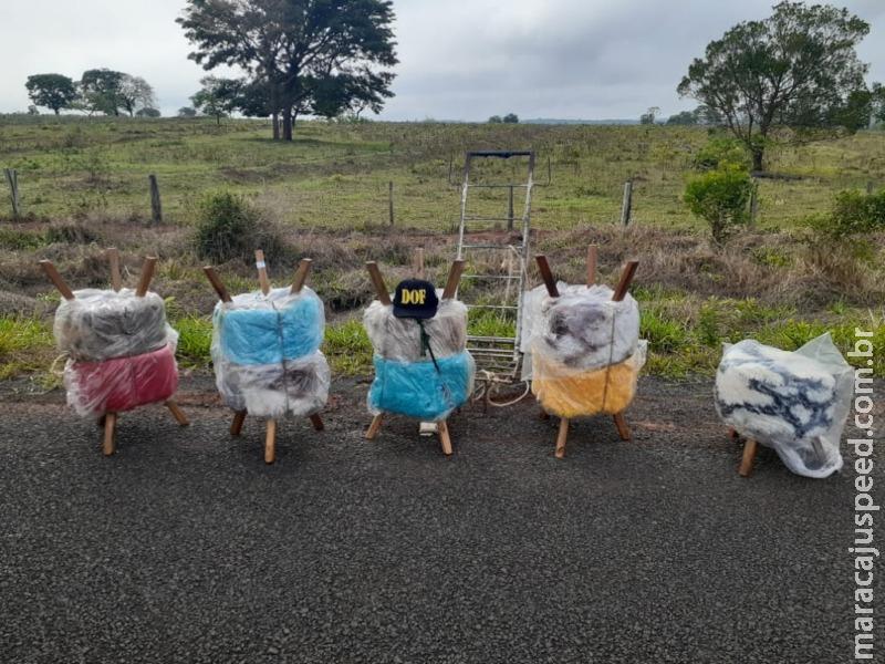 Passageiro de ônibus que transportava maconha foi preso pelo DOF na região de Tacuru