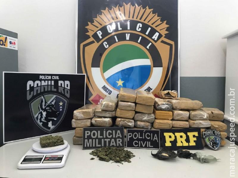 Polícia Civil de Jardim deflagra operação de combate ao tráfico de drogas