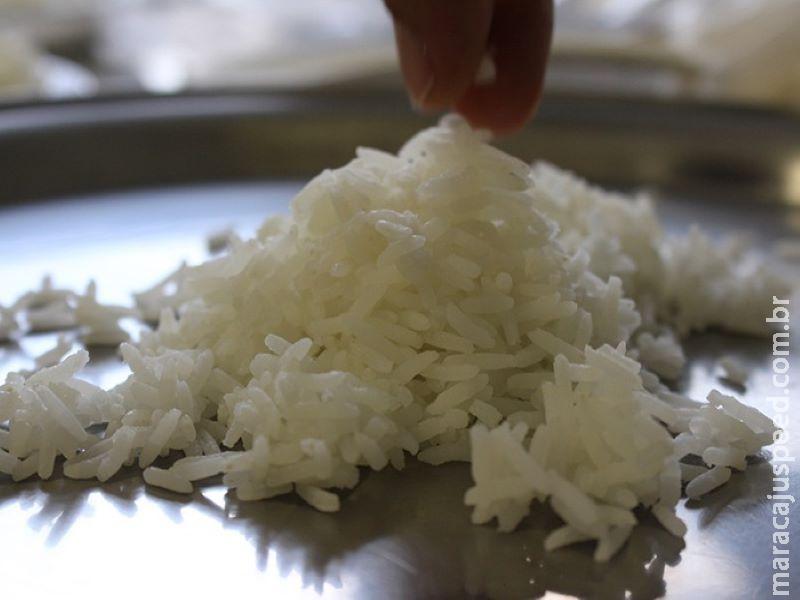 Cientistas identificam os compostos do arroz aromático brasileiro