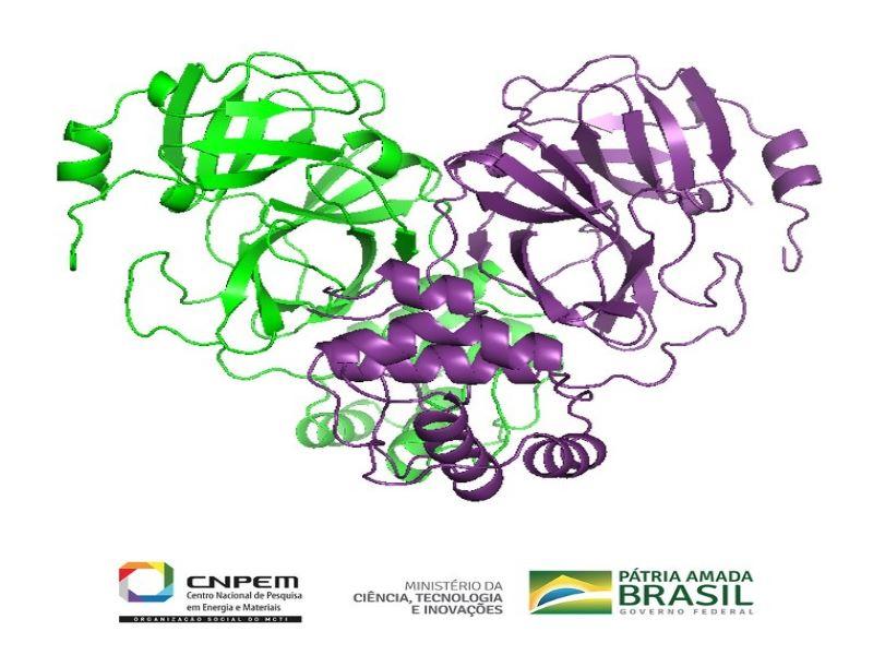 Acelerador de partículas brasileiro realiza primeiras imagens do coronavírus