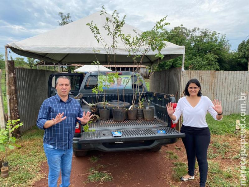Maracaju: Em última semana de campanha, Thiago Caminha planta 10 árvores que simbolizam 10 compromissos com Maracaju