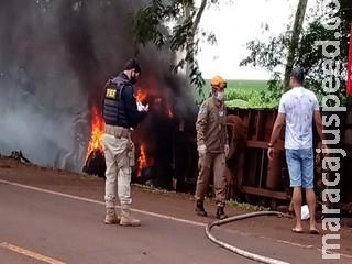 Bombeiro é atropelado quando atendia incêndio em caminhão de porcos na BR-376