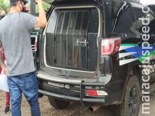 Polícia prende 2º envolvido em roubo de hotel em cidade de MS