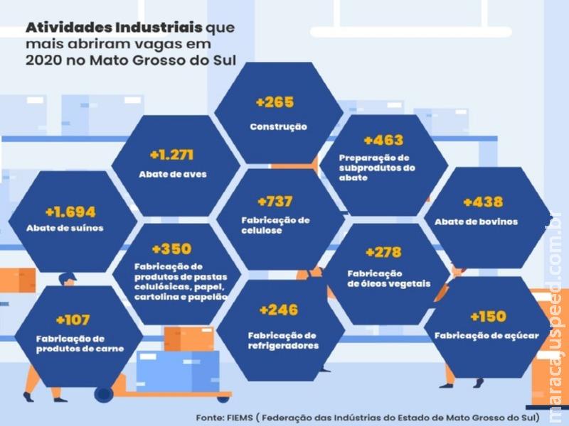 MS: Indústria é responsável por quase metade da geração de emprego no estado em 2020