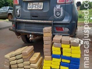 Polícia encontra R$ 1,5 milhão em drogas escondidas próximo da MS-244