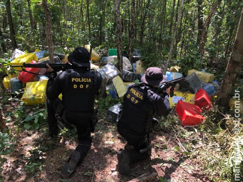 Mais de quatro toneladas de maconha foram apreendidas pelo DOF em uma mata durante a Operação Hórus