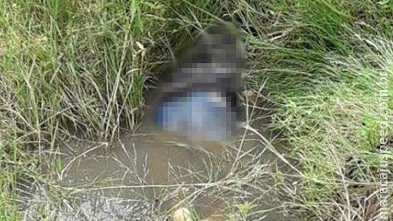 Corpo de homem com as calças abaixadas é encontrado em córrego nas Moreninhas
