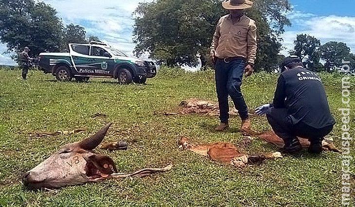 Delegado que atuou na fronteira assume delegacia especializada em crimes rurais em MS
