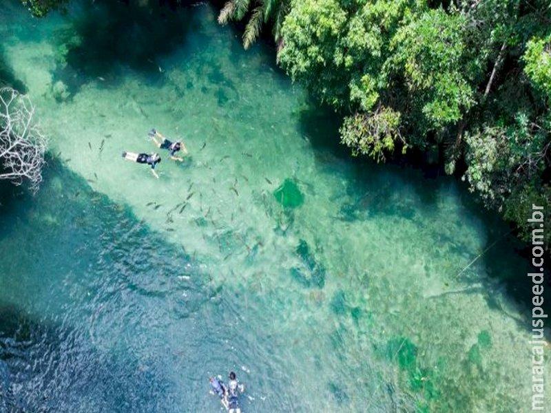 Margens do Rio Formoso podem se tornar áreas de preservação permanente
