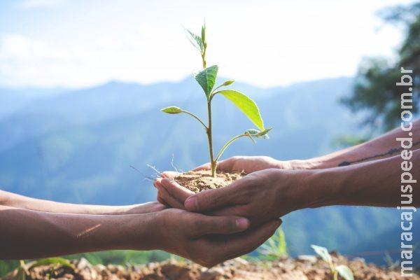 Empresas brasileiras implementam novas práticas socioambientais e de gestão