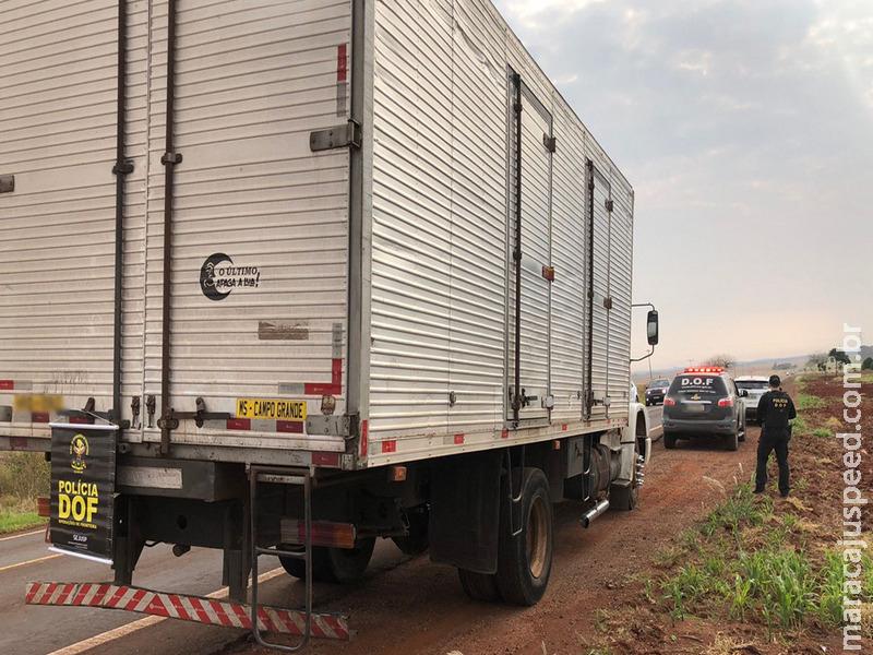 Caminhão com mais de 400 Kg de maconha escondidos entre sementes de girassol foi apreendido pelo DOF durante a Operação Hórus