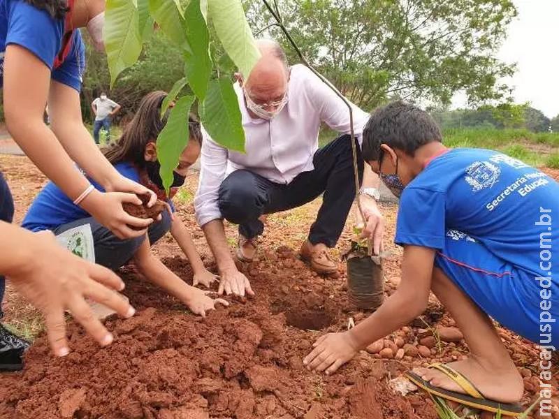 Ponta Porã: Prefeitura desenvolve projeto para conscientizar a população sobre a importância de manter a vegetação nativa